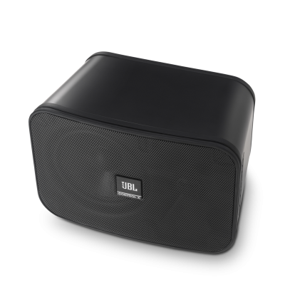 JBL Control X  Indoor , Outdoor Speakers in Black - CONTROLXBLKAM