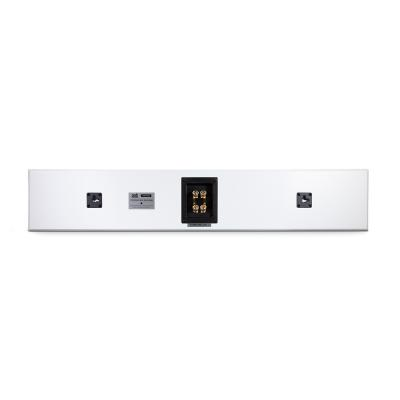 PSB Speakers Single Channel Flat Panel On-Wall Speaker In Satin White - PWM2 WHT