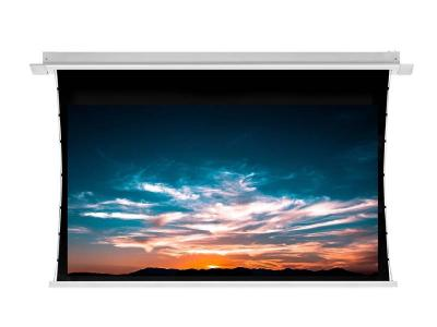 Ciruss Screens Harbour 2 Series In-Ceiling, Tab-Tensioned Projector Screen - CS-110H2-178G3