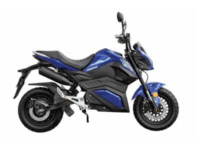 Daymak Sport Electric Scooter with Built in MP3 Player in Blue - Road Warrior (Bl)
