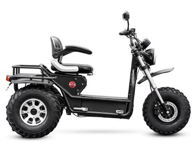 Daymak Mobility Scooter With Dual Motors In Black - Boomerbeast 2 D (B)