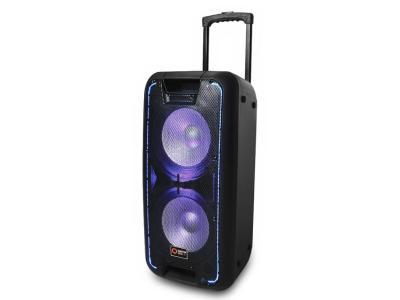 Quantum Audio Dual 10 Inch Portable Speaker System - QDJ210WP