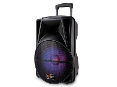 Quantum Audio 12 Inch Portable Speaker System - QDJ12WP