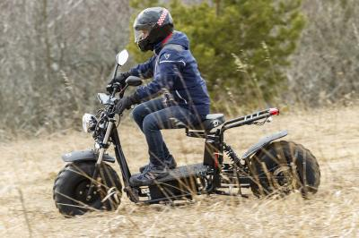 Daymak Off Road Electric Scooter -Beast Standard
