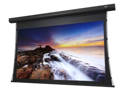 "EluneVision 112"" 16:9 Aurora 4K Tab-Tension Motorized Screen - ALR Grey 1.3 - EV-T3-112-1.3"