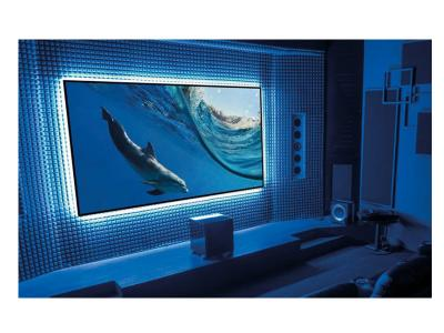 "EluneVision 135"" 16:9 Aurora NanoEdge ALR 4K Fixed-Frame Screen - EV-ZL-135-1.3"