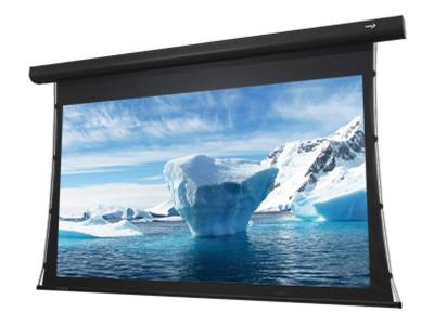 "EluneVision 112"" 16:9 Reference 4K Tab-Tension Motorized Screen EV-T3-112-1.0"