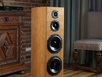 Bryston Loudspeaker - Middle T Active