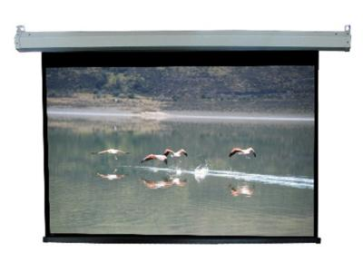 Daveco Motorized Projection Screen - DEG120