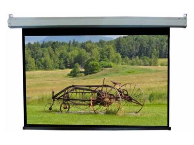 Daveco Pull Down Projection Screen - DMG092
