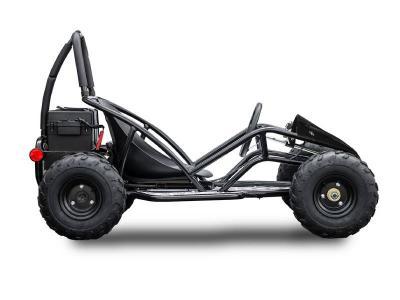 Daymak 1000W, 48V  Offroad Dune Buggies in Black - Dune Buggy JR (B)