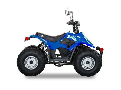 Daymak 800 W Electric Atv in Blue - GRUNT (Bl)