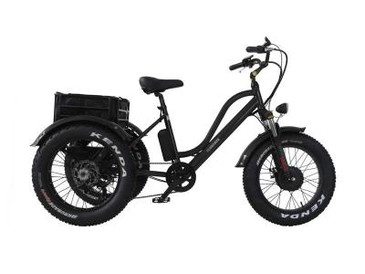Daymak 500W Florence Fat Tire Ebike in Black -Florence Fat Tire (B)