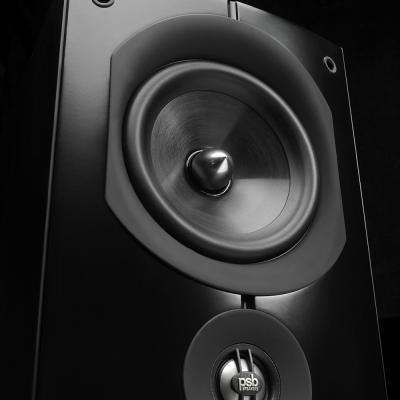 PSB Speakers Floor-Standing Speaker - Imagine X2T