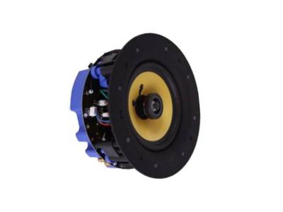 Omage Low Profile In-Ceiling Custom Wi-Fi Speaker - Q6WF
